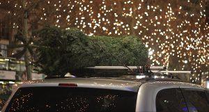 Juletræ pakket tagbøjle